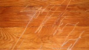 scratches on wood floors